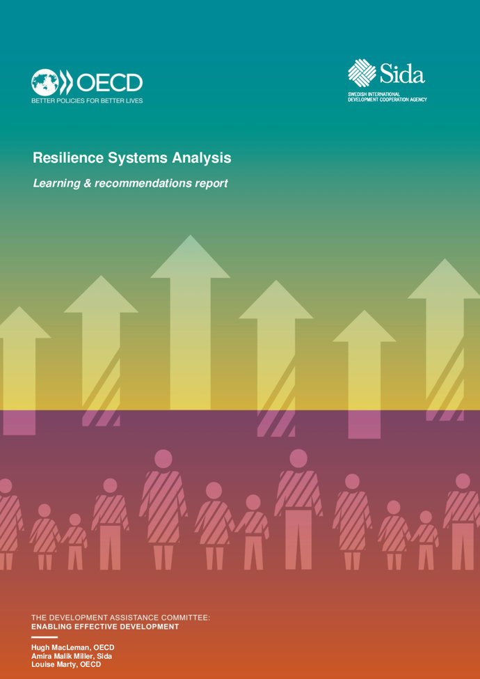 Resilience systems analysis: Learning and recommendations